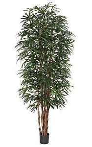 9 Foot Tall Life-Like Lady Palm -7 Natural Trunks - Green - Weighted Base