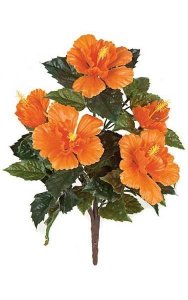 "21"" Hibiscus Bush - 5 Orange Flowers - Bare Stem"