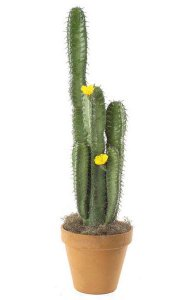 "40"" Plastic Column Cactus - 2 Flowers - Green - Bare Stem"