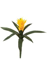 "14"" Bromeliad - 9 Green Leaves - Gold Yellow Flower - Bare Stem"