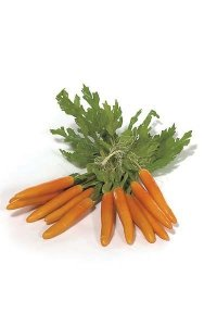 "Foam Mini Carrot with Leaves - 3"" Carrot - Orange - 6 Pieces per Bag"