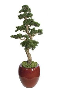 6' Plastic Cedar Bonsai with Black Pot - 1,780 Green Leaves