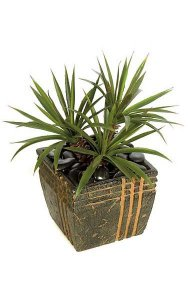 "22"" Plastic Star Succulent/Aloe Bush - 60 Green/Red Leaves - 21"" Width - Weighted Base"