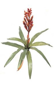 "23"" Bromeliad - Natural Touch - 12 Leaves - 1 Flower - 23"" Width - Orange/Yellow"