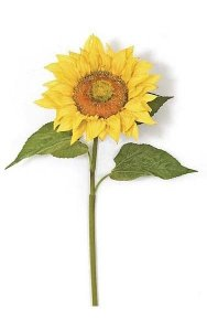 "37"" Giant Sunflower Stem - Gold/Yellow Flower - 10"" Width"