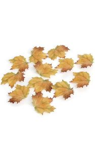 "3"" x 4"" Maple Leaves with Veins - Yellow/Brown - 12 pcs per bag"