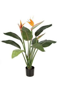 3.5' Bird of Paradise Plant - 8 Leaves - 2 Orange Flowers - 1 Bud - Weighted Base