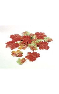 Silver Maple Bag of Leaves -  Multi Fall