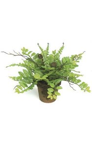 "11"" artificial Fern in Clay Pot with Moss - Green"