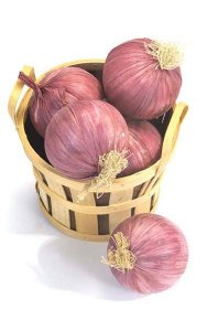 "Large Onion - 3.5"" Diameter - Lavender"