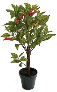 "24"" Chili Leaf Topiary - 7 Red Peppers"