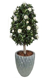 4.5' Gardenia Artificial Topiary - Natural Trunk - White - Weighted Base