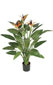 "55"" Bird of Paradise Plant - 32 Green Leaves - 3 Orange Flowers - 1 Bud - Weighted Base"