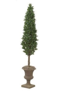 7' Laurel Cone Topiary - Natural Trunk - 1,998 Leaves - 513 Berries - Green - Weighted Base