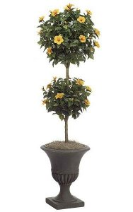 6' Hibiscus Artificial Topiary - Double Ball - Natural Trunk - 876 Leaves - 33 Peach Flowers - Weighted Base