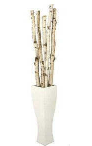 "6' to 8' Natural Birch Poles - 2"" to 3"" Diameter (5 pcs per Bundle) - NET PRICE"