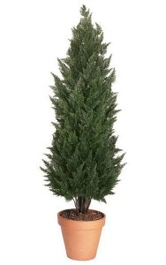 "6' Outdoor Polyblend Cypress - Synthetic Trunk - 24"" Width - Green - Bare Stem"