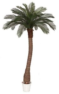 8' Cycas Palm Tree - Synthetic Trunk - 24 Fronds - Bare Trunk