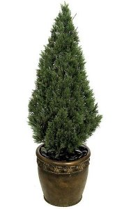 "4' Outdoor Plastic Cedar Tree - 1,184 Green Leaves - 14"" Width - Weighted Base"
