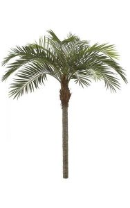 P-123200 11' Coconut Palm Tree - Curved - Synthetic Brown Trunk -10 Fronds - Metal Base Plate