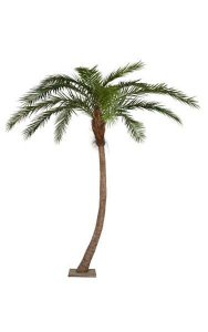 "14' Phoenix Palm Tree - Curved - Synthetic Brown Trunk - 5"" Diameter - 13 Fronds - Metal Base Plate"