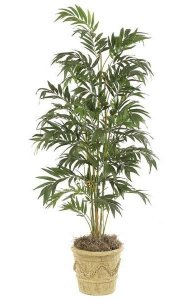 6.5' Bamboo Palm - 5 Synthetic Canes - 672 Leaves - Green - Bare Trunk