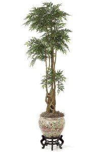 6' Ruscus Tree - Natural Trunks - 2,812 Leaves - Berry Clusters - Green - Weighted Base - Case Quantity Only