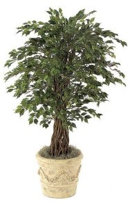 4.5' Mini Ficus Tree - Natural Trunks - 2,030 Leaves - Green - Weighted Base
