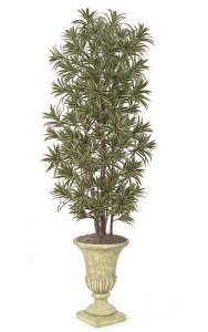 7' Dracaena Reflexa Tree - Natural Trunks - 2,820 Leaves - Green/Yellow - Weighted Base