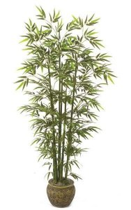 6' Bamboo Palm - Natural Green Canes - 1,080 Leaves - Weighted Base