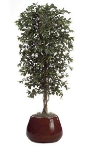 6.5' Artificial Ficus Tree - Natural Trunk - 2,700 Leaves - Green - Weighted Base