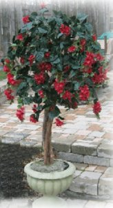 EF-500 Custom Made UV Plastic Polyblend Flowering Bougainvillea Tree Comes from 4 to 7 feet Made in 6 different colors