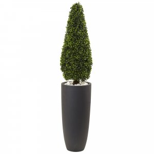 Outdoor Boxwood Topiary