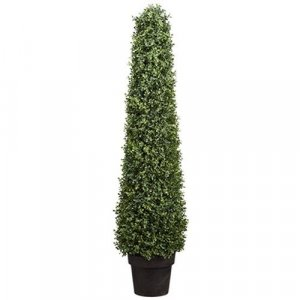 "46"" Boxwood Cone  Indoor/Outdoor"