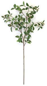 "31"" Live Oak Branch - 108 Green Leaves"
