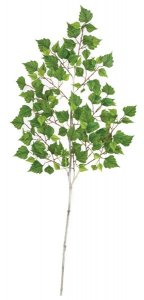 "52"" Birch Spray - 168 Leaves - 24"" Width - Tutone Green"