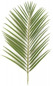 "35"" Areca Palm Branch - 42 Leaves - Green - FIRE RETARDANT"