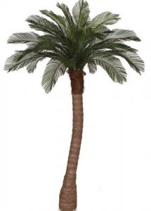 6' Cycas Palm Tree - Synthetic Trunk - Specify Style - 24 Fronds