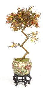 3.5' Mini Japanese Maple Faux Bonsai Multi Fall