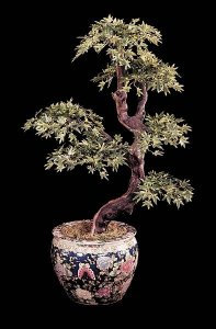 Custom made Life like Mini Japanese Maple Bonsai Comes in Green, Red/Green, and Red/Brown