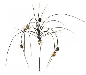 Halloween Monkey Grass Sold in a set of 6