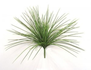 "21"" Tall with stem 16"" of  Plastic Onion Grass (Price is for a 6pc set)"
