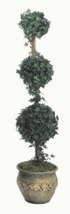 Life Like Faux 5' Three Ball Oxford Ivy Topiary