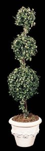 6' Faux English Ivy Topiary 3 Ball 6 ' English Ivy Topiary 3 Ball