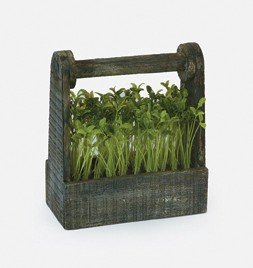 Kitchen Decorating Accessory Bean Sprout in Wooden Box