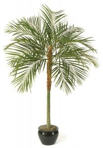 7' Faux Life Like Areca Palm Tree No longer Available