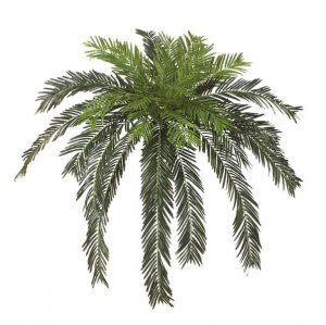 "60"" Cycas Palm Cluster 30 Fronds"