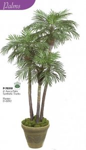 "6' Palm Tree - Painted Triple Trunks - 1,580 Green Leaves - 40"" Width - Weighted Base"