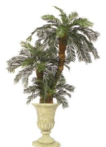 Custom Made Cycas Palm Tree Combination