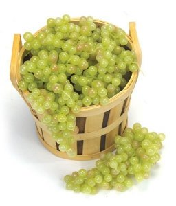 Muscat Grape Cluster Sold by the dozen